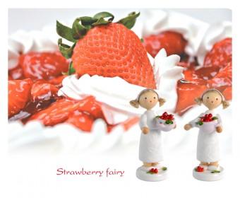 FLADE-Erdbeerfee